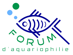 forum d'aquariophilie Forum Index
