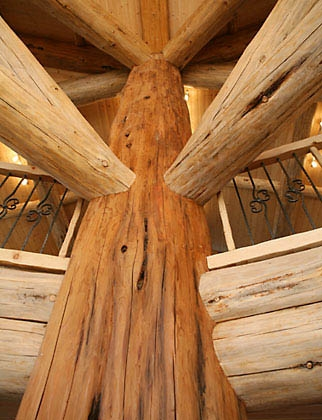 Quienes somos dep sito de maderas el guayac n for Estructura casa de madera